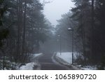road in the middle of a forest  ... | Shutterstock . vector #1065890720