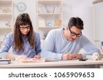 two medical students studying... | Shutterstock . vector #1065909653