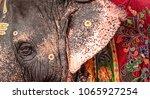 temple elephant  meenakshshi...   Shutterstock . vector #1065927254