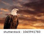 quebec  qc   canada september... | Shutterstock . vector #1065941783