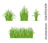 set of isolated grass... | Shutterstock .eps vector #1065952439