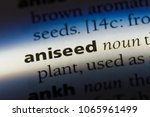 Aniseed Word In A Dictionary....