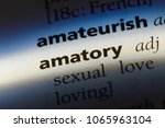 Small photo of amatory word in a dictionary. amatory concept.
