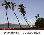 green sea turtles on maui   Shutterstock . vector #1066005026