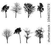 collection of tree silhouette...   Shutterstock . vector #1066013273