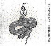 snake illustration on grunge... | Shutterstock .eps vector #1066016246
