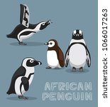 African Penguin Cartoon Vector...