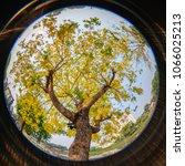 circular fisheye view of golden ...   Shutterstock . vector #1066025213