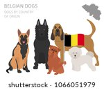 dogs by country of origin....   Shutterstock .eps vector #1066051979