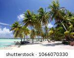 tropical beach with palm trees  ... | Shutterstock . vector #1066070330