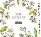 vector background with linden... | Shutterstock .eps vector #1066103450