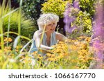 portrait of a blond senior... | Shutterstock . vector #1066167770