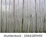 grunge metal textures | Shutterstock . vector #1066185440