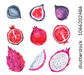 watercolor hand painted fruits. ... | Shutterstock . vector #1066202486