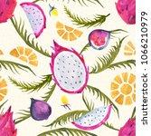 watercolor pitaya. hand painted ...   Shutterstock . vector #1066210979
