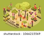 gardening infographic elements... | Shutterstock .eps vector #1066215569