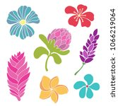 tropical flowers. isolated on... | Shutterstock .eps vector #1066219064