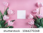 tulips flowers on pink... | Shutterstock . vector #1066270268