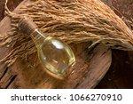 bottle of rice bran oil and... | Shutterstock . vector #1066270910