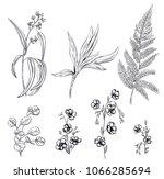 set of black monochrome flowers ... | Shutterstock .eps vector #1066285694
