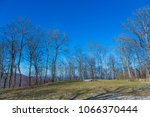 trees and fairground at the...   Shutterstock . vector #1066370444