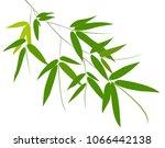 bamboo leaves on white... | Shutterstock .eps vector #1066442138