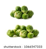 brussels sprouts cabbage... | Shutterstock . vector #1066547333