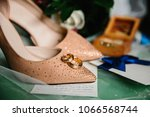 a pair of gold wedding rings on ... | Shutterstock . vector #1066568744