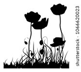 black and white poppies vector | Shutterstock .eps vector #1066620023