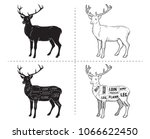deer meat cuts with elements... | Shutterstock .eps vector #1066622450