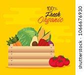 fresh vegetables in wooden... | Shutterstock .eps vector #1066676930