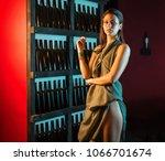 attractive slim brunette posing ...   Shutterstock . vector #1066701674