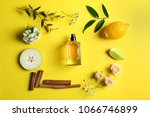 beautiful composition with... | Shutterstock . vector #1066746899