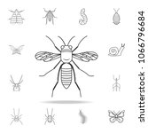 wasp icon. detailed set of...   Shutterstock .eps vector #1066796684
