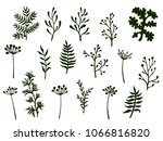 willow and palm tree branches ... | Shutterstock .eps vector #1066816820