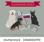 dogs by country of origin.... | Shutterstock .eps vector #1066836590