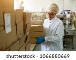 young female cheerful worker is ... | Shutterstock . vector #1066880669
