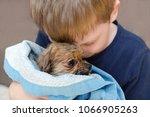 Little Boy Is Hugging With Lov...