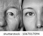 closeup of family eyes | Shutterstock . vector #1067017094