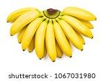 Bunch Of Baby Bananas Isolated...