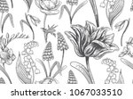 spring flowers. flower vintage... | Shutterstock .eps vector #1067033510