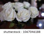 Stock photo white roses in a vase 1067046188