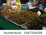 thai food fried spicy worms and ... | Shutterstock . vector #1067106338