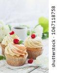 delicate vanilla cupcakes with... | Shutterstock . vector #1067118758