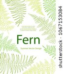 Fern Frond Tropical Leaves...