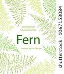 fern frond tropical leaves...   Shutterstock .eps vector #1067153084