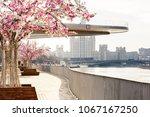 look at the soaring bridge park ... | Shutterstock . vector #1067167250
