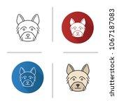 yorkshire terrier icon. yorkie. ... | Shutterstock .eps vector #1067187083