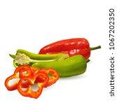 fresh  nutritious  tasty red... | Shutterstock .eps vector #1067202350