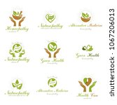 homeopathy creative symbols... | Shutterstock .eps vector #1067206013